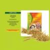 All-Pet – международный лидер в области кормов для домашних животных.-5670