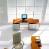 LegnoquattroS.p.a. – это итальянская компания, мировой лидер и один из немногих промышленных производителей цветного шпона-6214