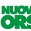 Nuova Defim группы Feralpi – единственная компания в Европе, специализирующаяся на производстве специальных электросварных сеток и решеток, заборов и оград марки Orsogril для профессионального, промышленного, общественного и военного назначения.-7377