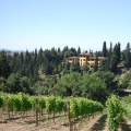 Rif. 1329 –Villa con parco, Campagna fiorentina - Toscana
