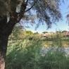 Lignano Riviera - Mare-2186