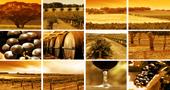 Продукты и Вино